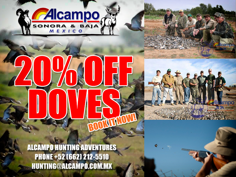 20% OFF DOVE HUNT - Book it now!